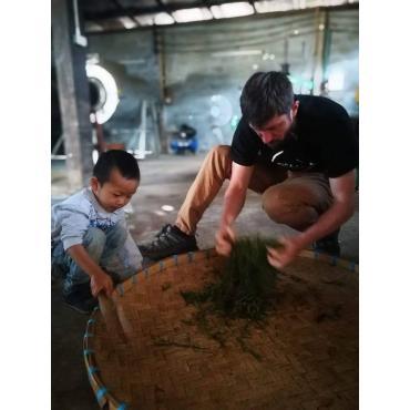 Tea oolong Yabukita Thailand 50g