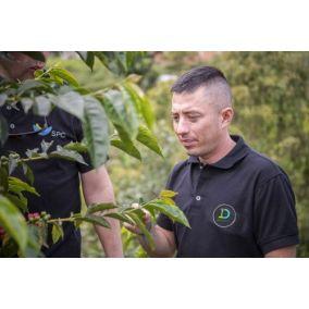 Beansmiths Kolumbie Diego...