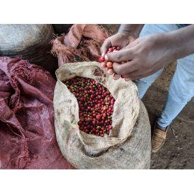 Nordbeans Etiopie Koke 200g