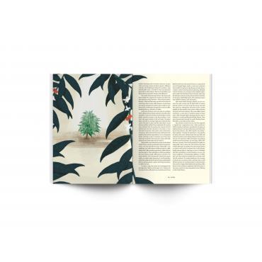 Standart Magazin No. 11