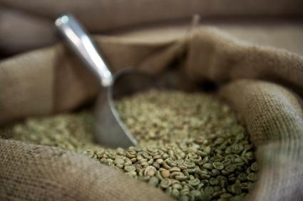 zelená káva příprava